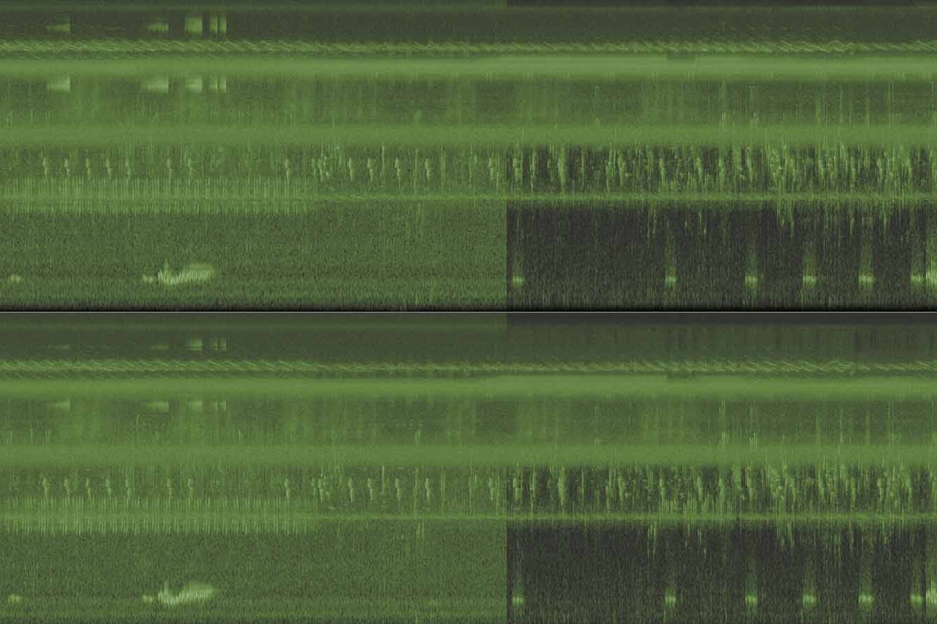 image of an audio spectrum, half of it containing broadband noise, the other half containing a cleaner signal with less noise