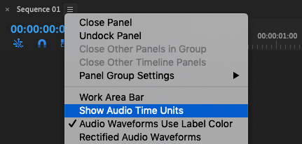 premiere pro show audio time units
